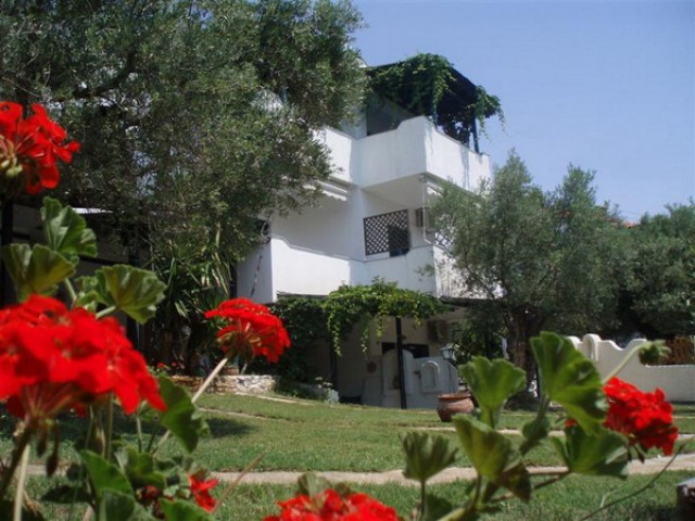 Olive House Studios & Apartments