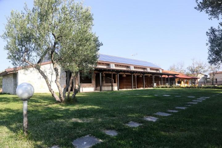 Gioulis Apartments & Studios